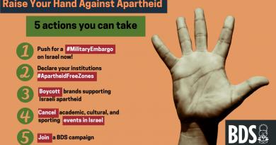 Empört über Apartheid Israels Verbrechen gegen Palästinenser*innen? Hier sind 5 Dinge, die Ihr tun könnt!